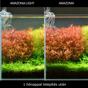 ADA Aqua Soil Powder Amazonia Light - 9 l