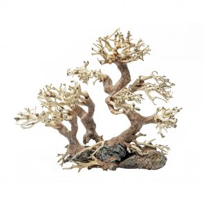 GreenWorks decoration - Bonsai tree Small Family (25x20x10 cm)