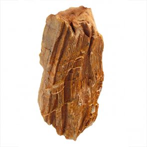 Red Stonewood - Indian petrified wood